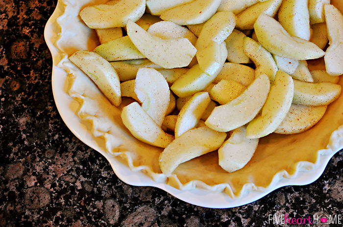 Fool-Proof-Flaky-Butter-Pie-Crust-by-Five-Heart-Home_700pxApples