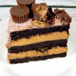 Flourless Chocolate Peanut Butter Cup Cake