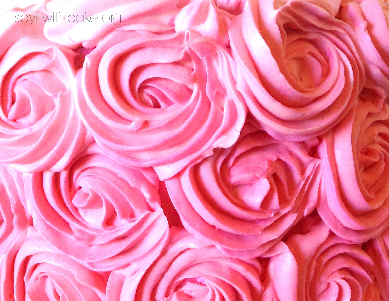 Pink rose swirl cake say it with cake this cake is very easy to make once you get the swiss meringue buttercream down i had a few problems my first time but found some helpful websites here mightylinksfo